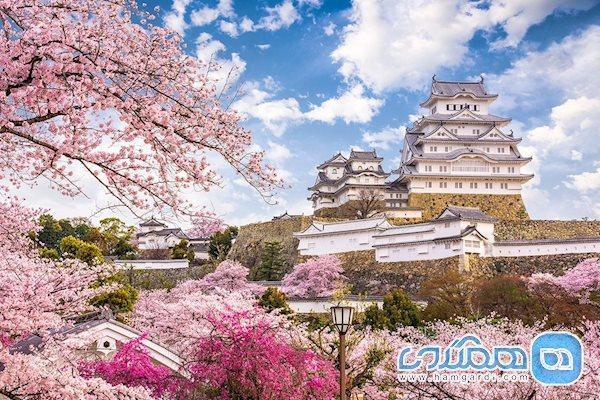 آشنایی با بهترین و بدترین زمان برای سفر به ژاپن