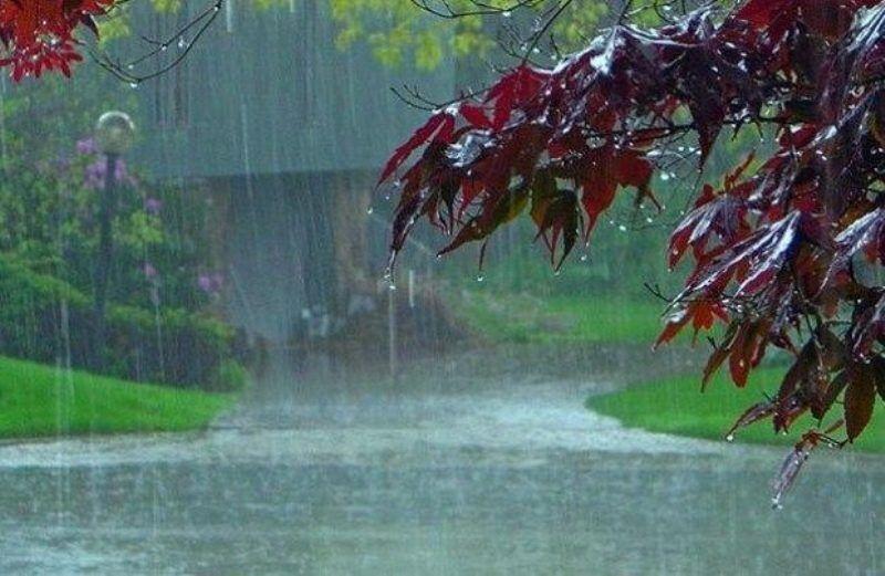 خبرنگاران 40 میلیمتر باران در صفی آباد اسفراین بارید