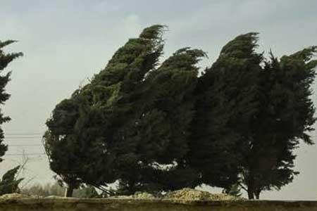 بارش برف و باران، وزش باد شدید و کاهش شدید دما در کشور