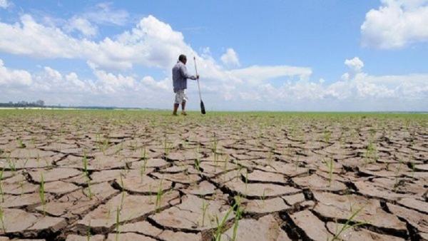 خبرنگاران تغییرات اقلیمی موجب کاهش 4 تا 18 درصدی اقتصاد دنیا می گردد